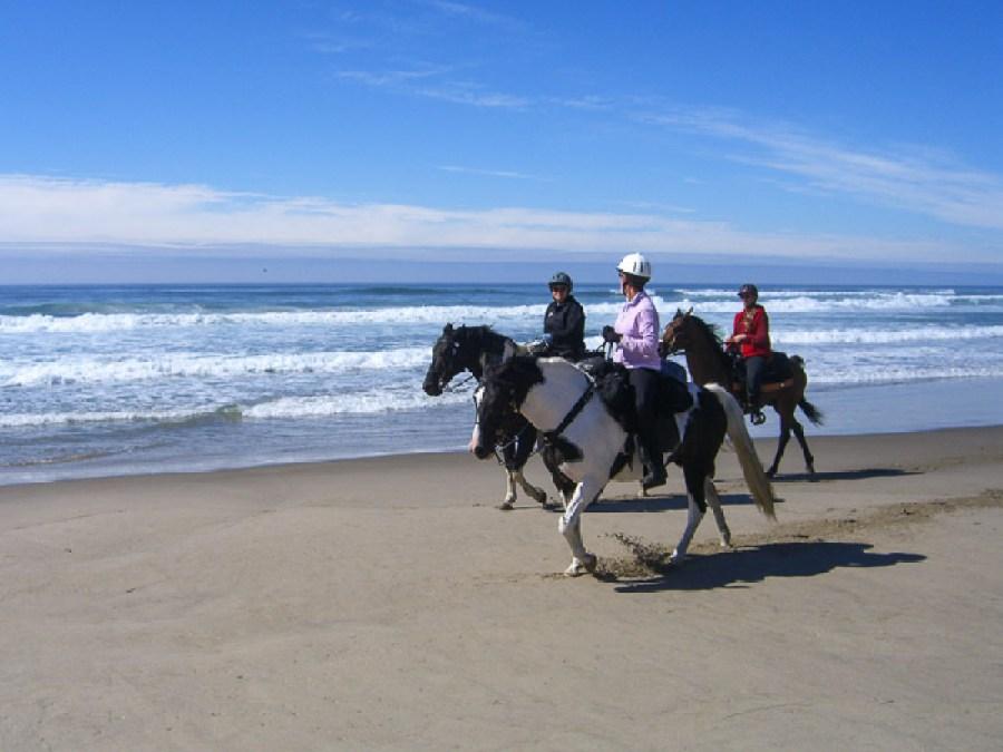 Horseback Riding Nehalem Bay