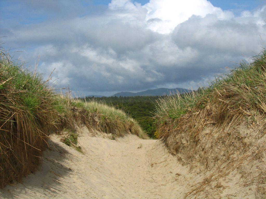 Nehalem Beach Trail