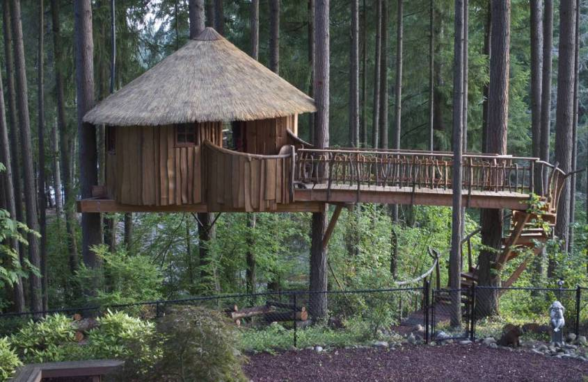 Tree Houses In The Pacific Northwest Explorer Sue Your Pacific