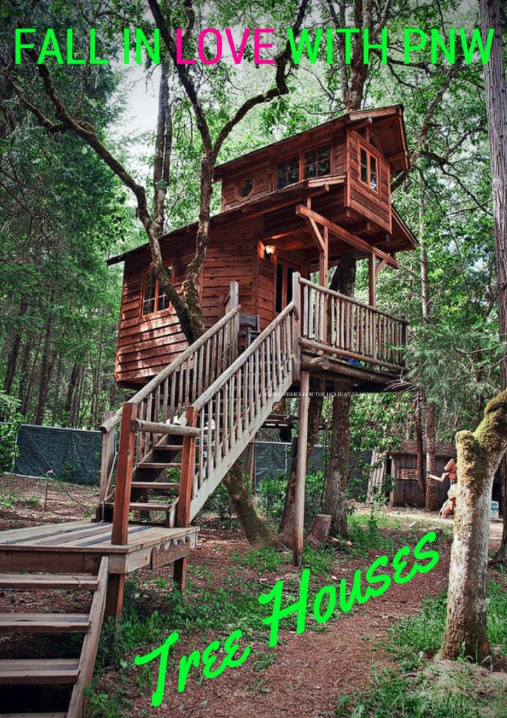 Tree Houses in the Pacific Northwest