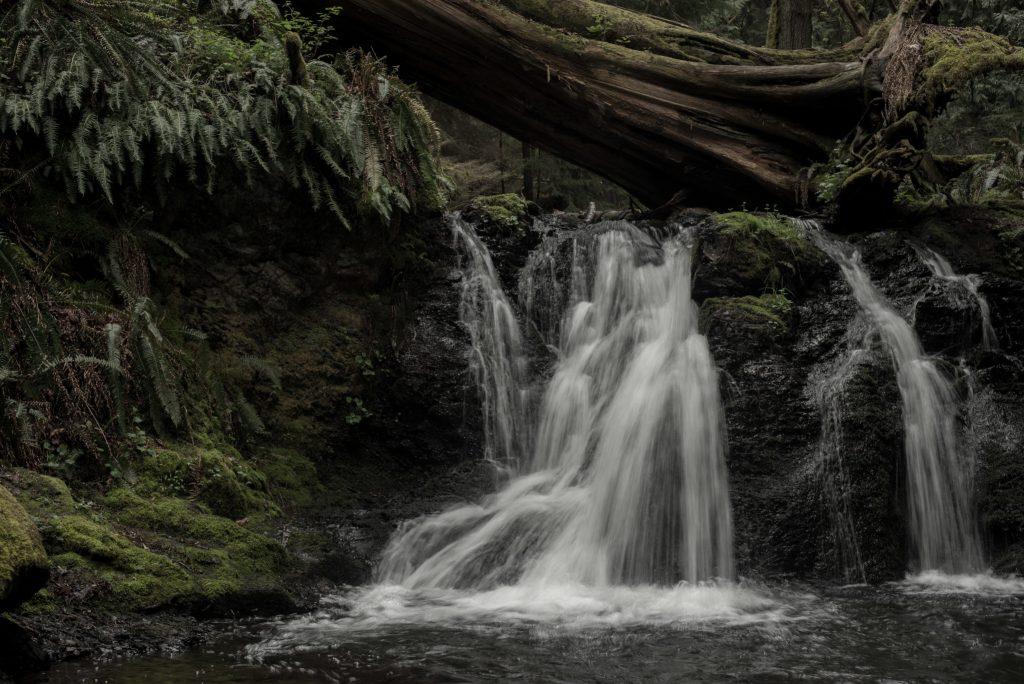 Moran State Park Falls