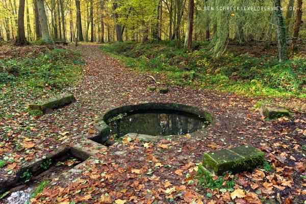 Quelle Font de Viljot Im Wald von Troncais Auvergne