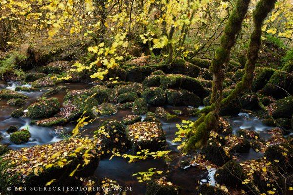 Chaos de Toul Goulic Herbstfotos aus der Bretagne