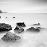 Küste im Nebel 4299