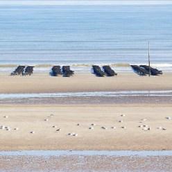 Austern Utah Beach Normandie