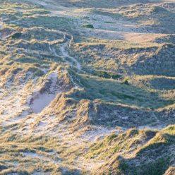 Dünenlandschaft Cotentin Normandie 0172