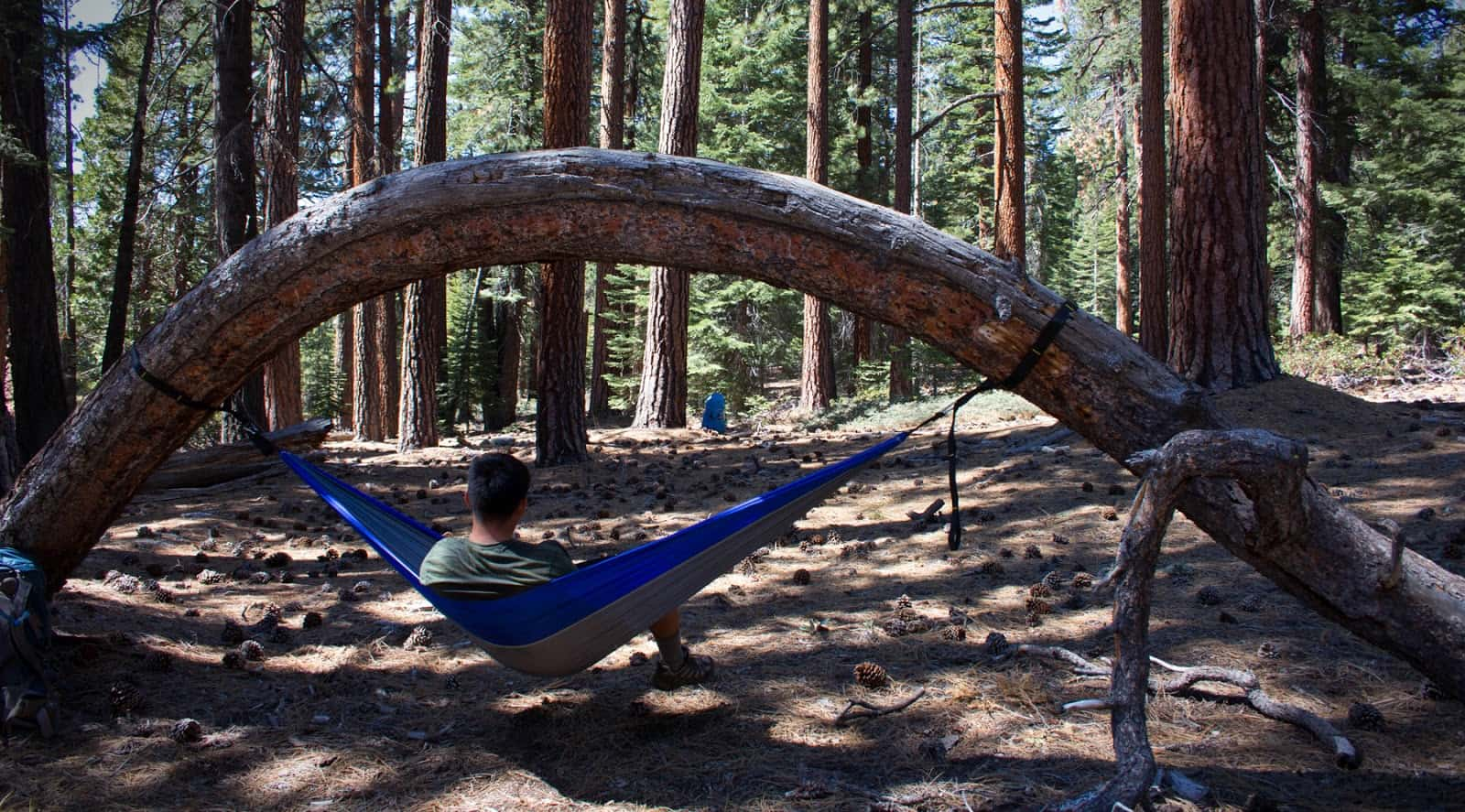 The Ultimate Beginner S Guide To Hammock Camping