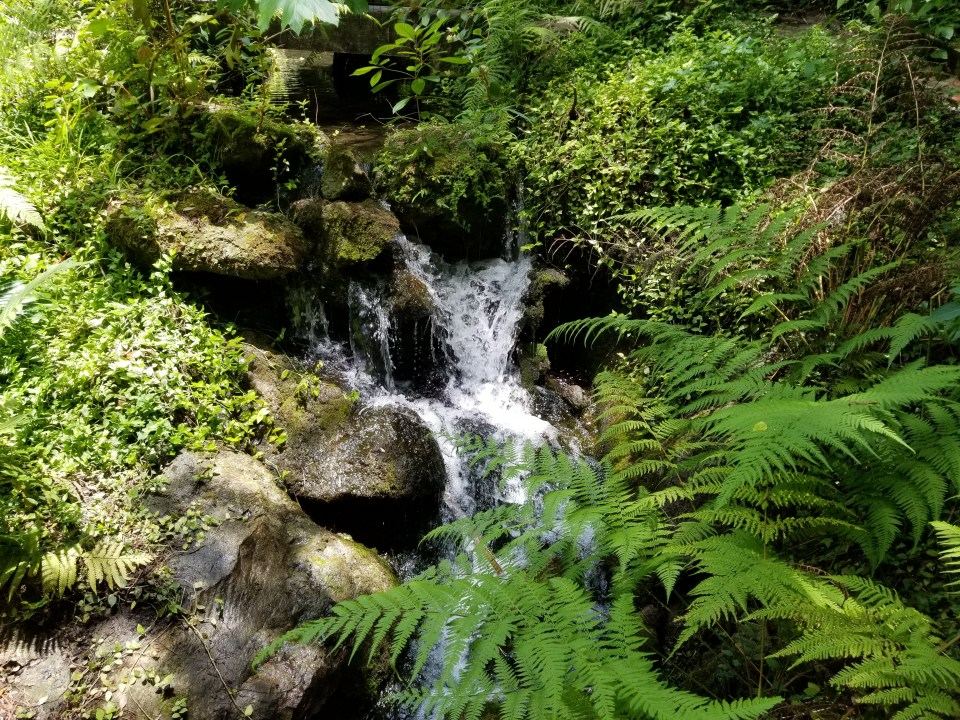 mad made waterfall at Rainbow Springs State Park in small town Florida