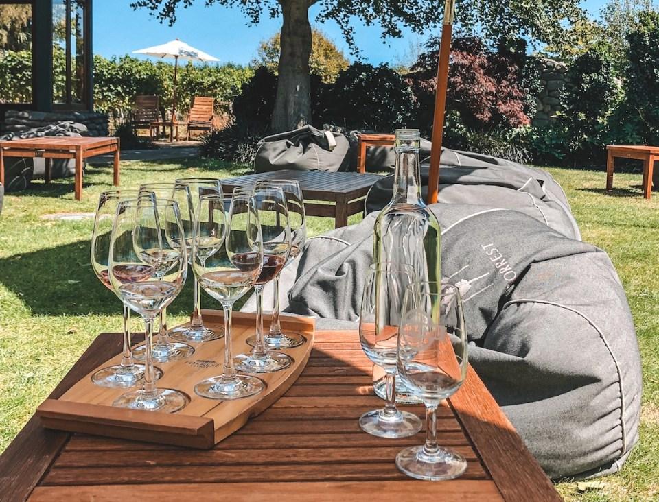 photo of wine tastings in the Marlborough wine region of New Zealand