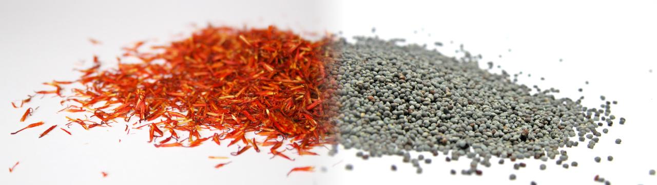 spice_1280x360_1004