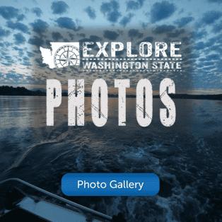 Browse All Photos