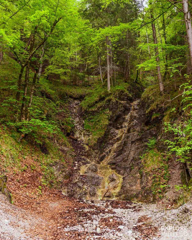 Nature trail near Hohenschwangau and Neuschwanstein Castle