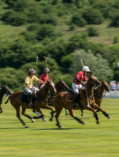 Motorpoint Polo at the Manor 2017
