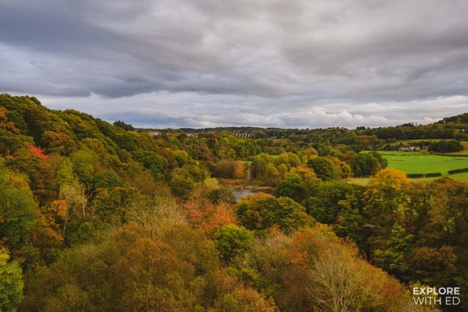 Autumn in Wrexham, North Wales
