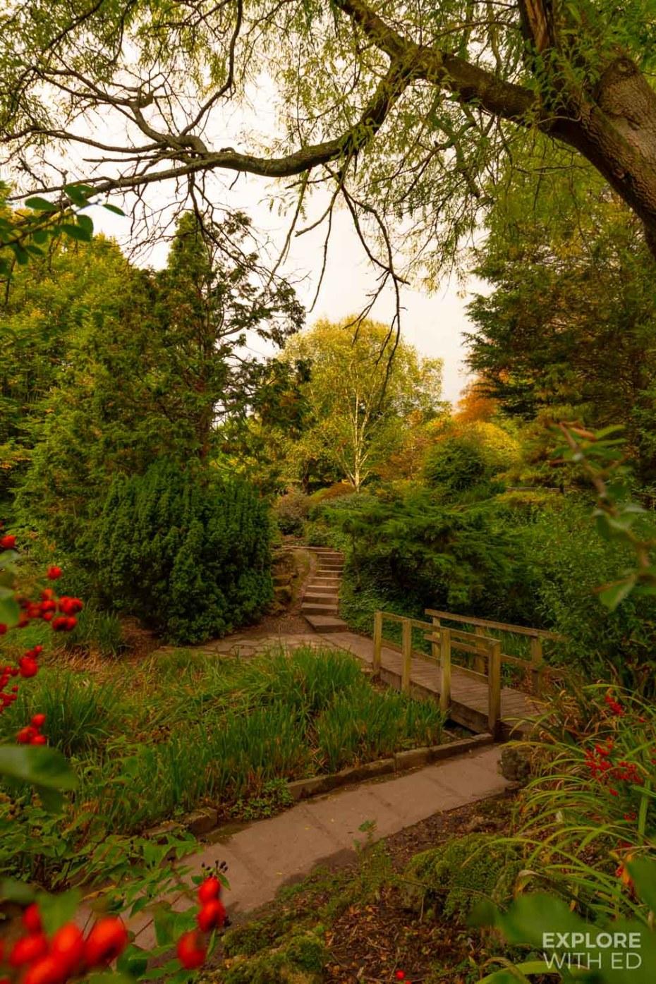 Beechwood Park in Newport