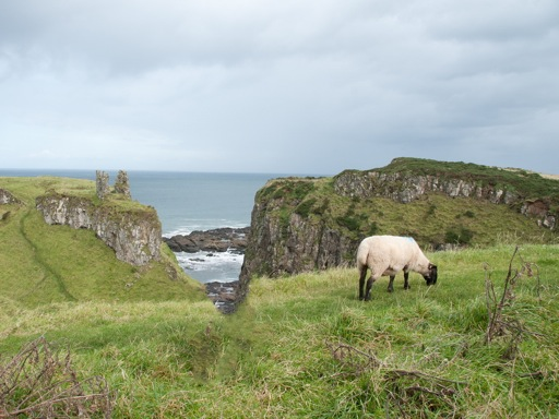 Castles in Northern Ireland - Dunseverick