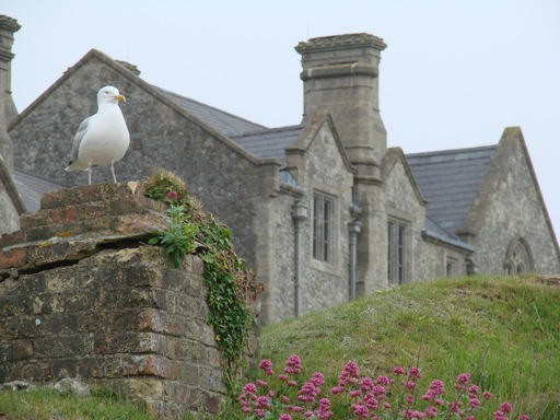 Dover Castle England Officers Barracks and Seagull