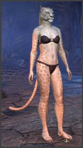 Body Markings of the Khajiit - Position 5