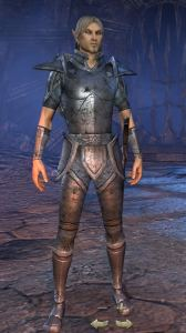 Exploring the Elder Scrolls Online - Male High Elf