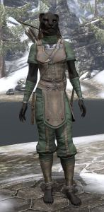 My character - She Who Wanders