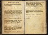 The Books of the Elder Scrolls Online - The Reality of Spirits