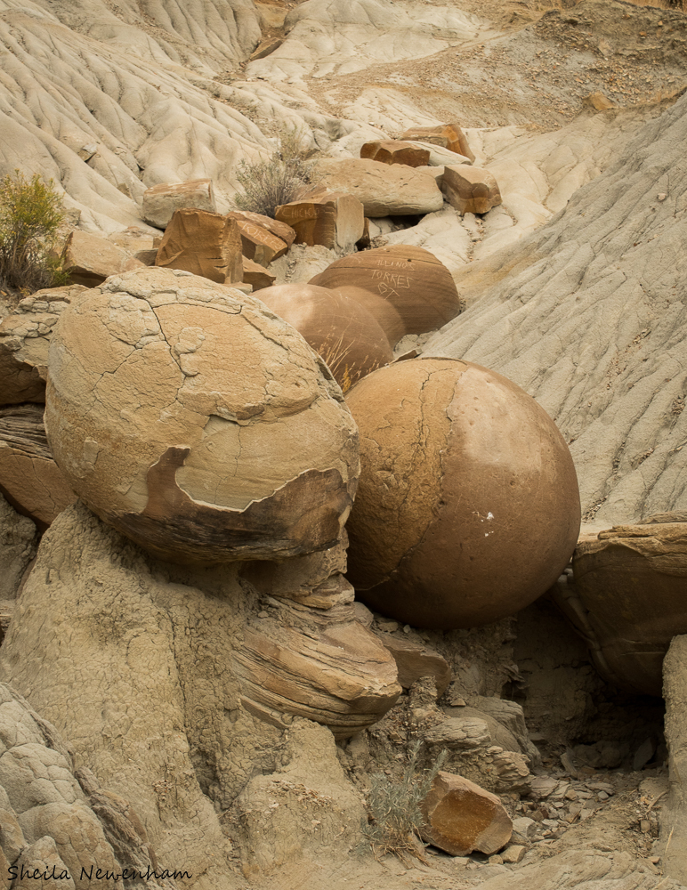 Cannon ball concretions