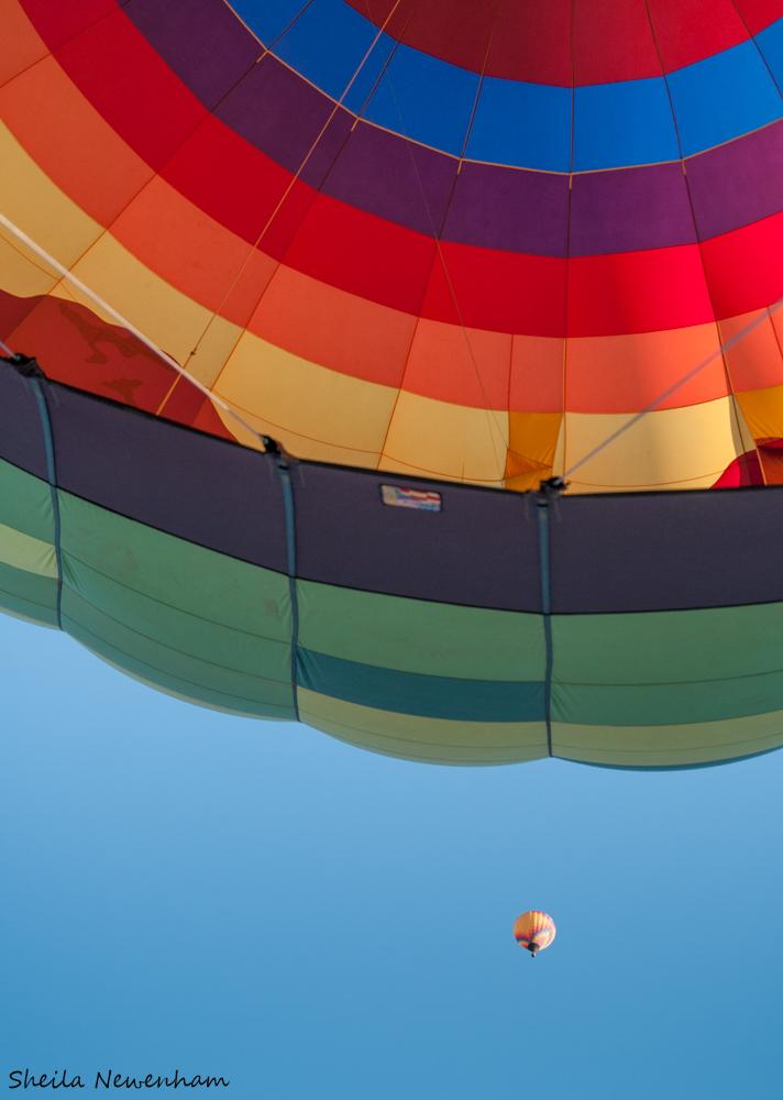 Hot Air balloon Tetons