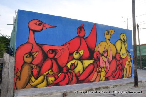 Flock-of-Birds-Holbox