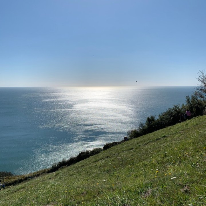 The sun playing on the sea just off Salcombe Hill