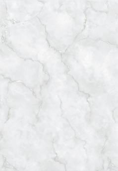 LEÓN GRIS 32 x 47