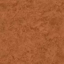 CARIBE MARRON 51 x 51