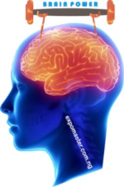 exercise improves brain power