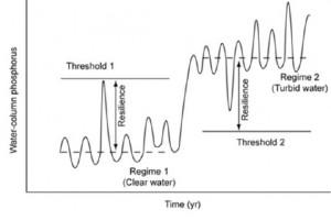 Staudinger et al, 2012