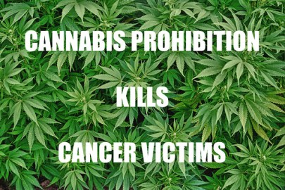 cannabisprohibitionkillvictims