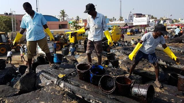 People cleaning the Chennai oil spill