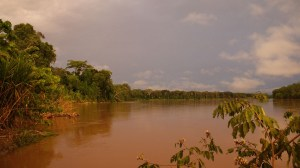 River around the amazon rainforest