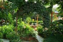 En un recorrido por la Universidad Industrial de Santander (UIS), ubicada en la ciudad de Bucaramanga, el equipo de Expresión Naranja se encontró con el Jardín Botánico con Sentido, un sitio donde las plantas tiene forma, sabores, aromas y fragancias.