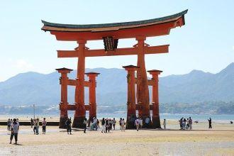 tarifa error vuelos japón