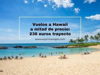hawaii vuelos mitad precio 236 euros