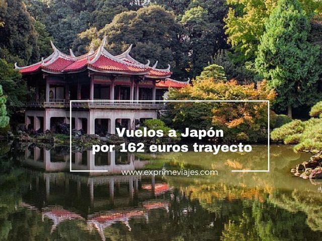 japón vuelos 162 euros trayecto