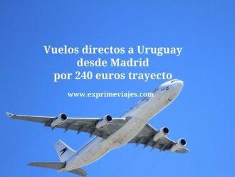 Vuelos directos a Uruguay desde Madrid por 240 euros trayecto