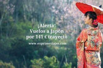 japon vuelos 141 euros trayecto
