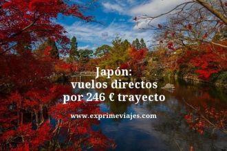 Japon vuelos directos por 246 euros trayecto