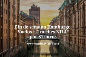 Fin de semana Hamburgo Vuelos mas 2 noches NH 4 estrellas por 81 euros
