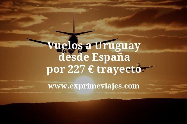Vuelos a Uruguay desde Espana por 227 euros trayecto
