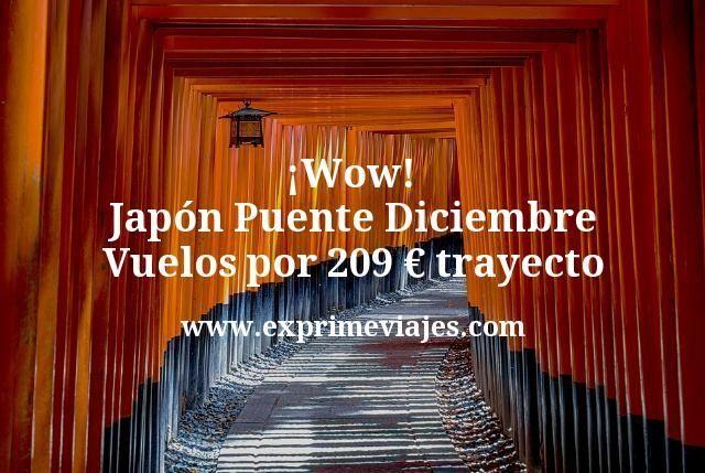 ¡Wow! Japón Puente Diciembre: Vuelos por 209euros trayecto