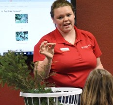Dawn leads wreath-making workshop.