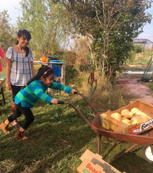 Girl pushes wheelbarrow, another watches smiling.