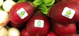 Double Up Food Bucks radishes