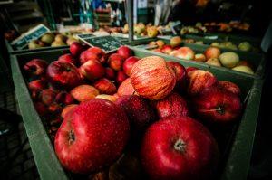 wholesale toolkit apples